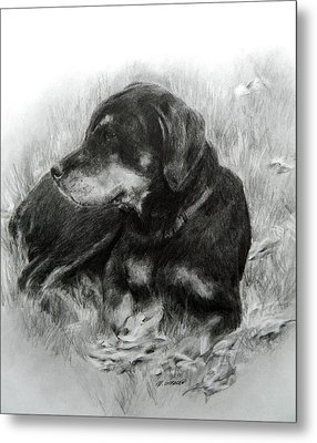 Metal Print featuring the drawing Ruby by Meagan  Visser