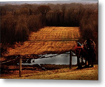 Saddle Up Enjoy The View Metal Print by Kim Henderson