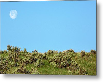 Sage Moon Metal Print by Todd Klassy