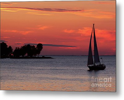 Sailing Home Metal Print by Joel Witmeyer