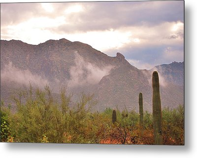 Santa Catalina Mountains II Metal Print by Donna Greene