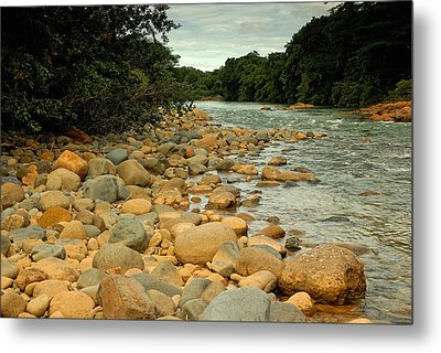 Santa Maria River Metal Print by Iris Greenwell