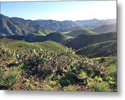 Metal Print featuring the photograph Santa Monica Mountains - Hills And Cactus by Matt Harang