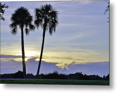 Savanna Sunrise Metal Print
