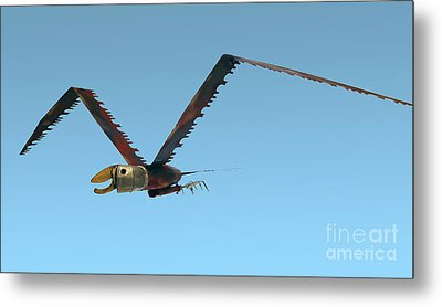 Metal Print featuring the photograph Saw Bird -raptor by Bill Thomson
