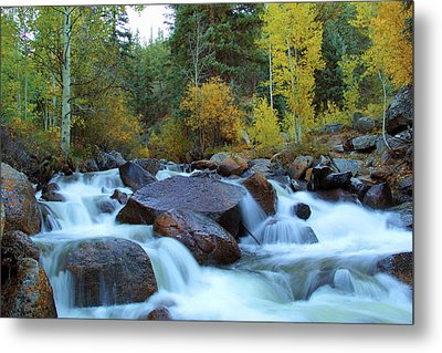 Metal Print featuring the photograph Scott Gomer Creek At Guanella Pass by Marie Leslie
