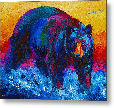 Scouting For Fish - Black Bear Metal Print by Marion Rose