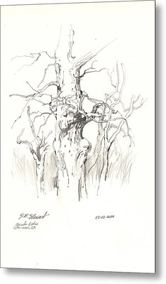 Scrub Oaks In Cottonwood Metal Print by John Norman Stewart