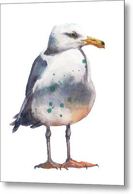 Seagull Print Metal Print by Alison Fennell