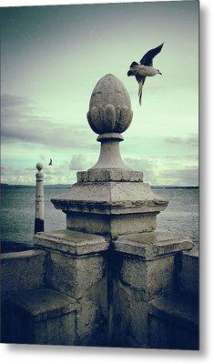 Seagulls In Columns Dock Metal Print by Carlos Caetano