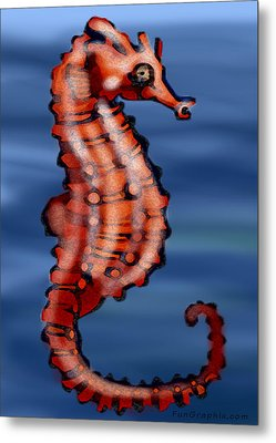 Seahorse Metal Print by Kevin Middleton
