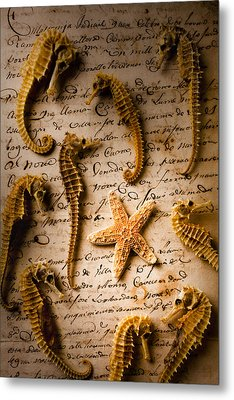 Seahorses And Starfish On Old Letter Metal Print