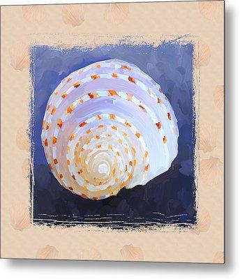 Seashell Iv Grunge With Border Metal Print by Jai Johnson