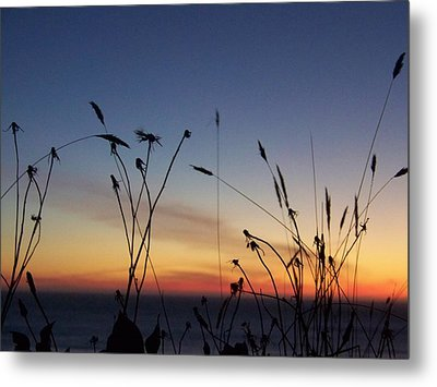 Seasons End Metal Print by Angi Parks
