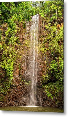 Secret Falls Metal Print by Brian Harig