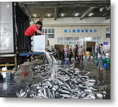 Metal Print featuring the photograph Selling Grey Mullet Fish In Taiwan by Yali Shi