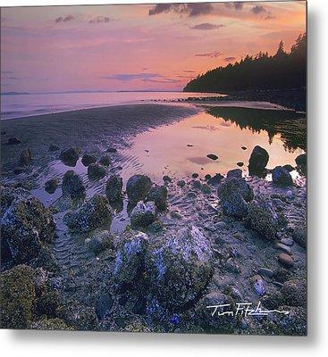 Semiahmoo Bay Metal Print