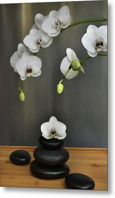Metal Print featuring the photograph Serene Orchid by Terence Davis