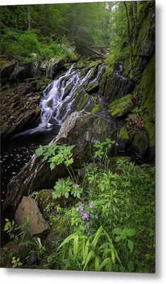 Metal Print featuring the photograph Serene Solitude by Bill Wakeley