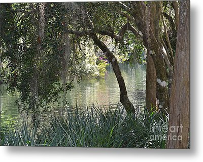 Metal Print featuring the photograph Serenity by Carol  Bradley