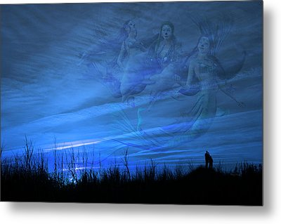 Serenity Guardians  Metal Print by Betsy Knapp