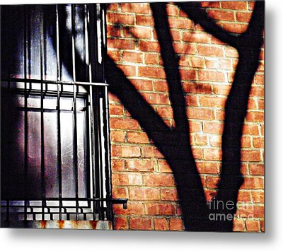 Shadow On The Wall Metal Print by Sarah Loft