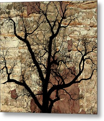 Shadow Wall Metal Print by Marty Koch