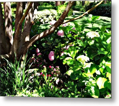 Metal Print featuring the photograph Shadows Through The Garden by Glenn McCarthy Art and Photography