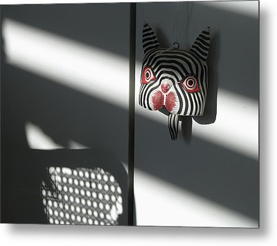 Metal Print featuring the photograph Shady Cat by Erik Falkensteen