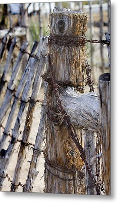 Metal Print featuring the photograph Shaggy Fence Post by Phyllis Denton