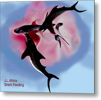 Shark Feeding Metal Print by Jerry White
