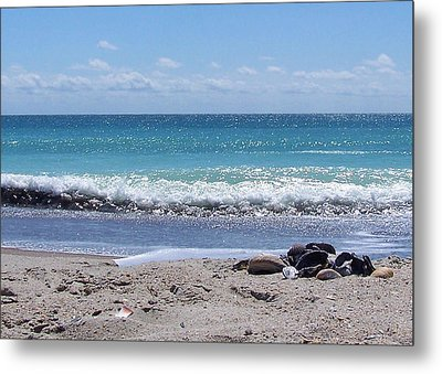 Metal Print featuring the photograph Shells On The Beach by Sandi OReilly