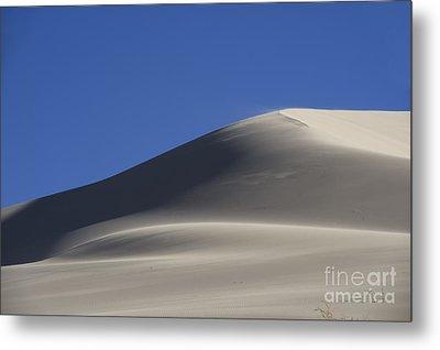 Shifting Dunes Metal Print by Ronald Hoggard