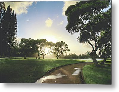 Show Me The Way Metal Print by Laurie Search