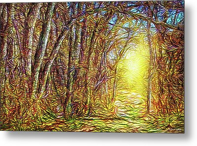 Silence Of A Forest Path Metal Print by Joel Bruce Wallach