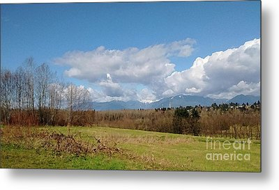 Metal Print featuring the photograph Simple Landscape by Bill Thomson