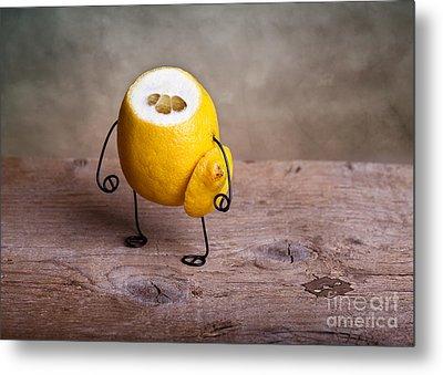 Simple Things 12 Metal Print by Nailia Schwarz