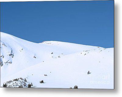 Metal Print featuring the photograph Simply Winter by Juli Scalzi