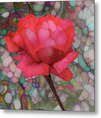 Single Rose Metal Print by Jack Zulli