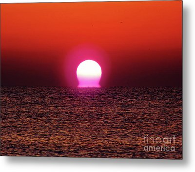 Metal Print featuring the photograph Sizzling Sunrise by D Hackett