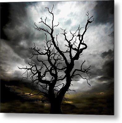Skeletal Tree Metal Print by Meirion Matthias