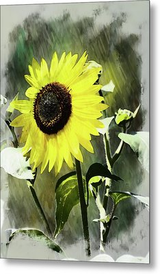 Sketchy Sunflower 2 Metal Print by Marty Koch