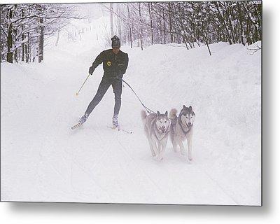 Skijoring In Maine. Model Released Metal Print