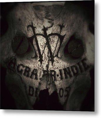 Skull Metal Print by Dave Edens