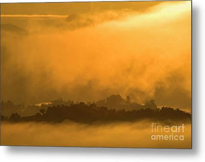 Metal Print featuring the photograph sland in the Mist - D009994 by Daniel Dempster