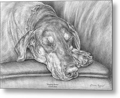 Sleeping Beauty - Doberman Pinscher Dog Art Print Metal Print by Kelli Swan