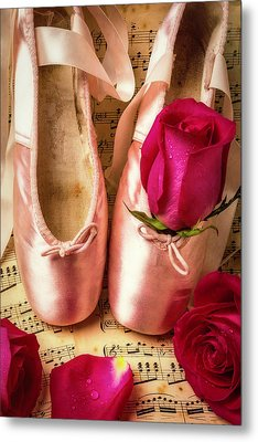 Slippers And Roses Metal Print by Garry Gay