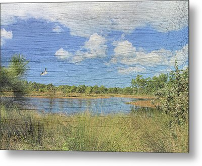 Small Pond With Weathered Wood Metal Print by Rosalie Scanlon