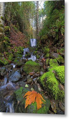 Small Waterfall At Lower Lewis River Falls Metal Print by David Gn