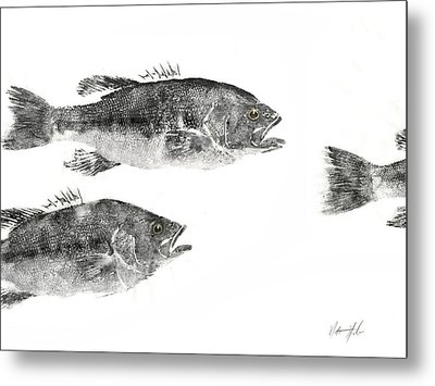 Smallmouth Metal Print by Nate Huber